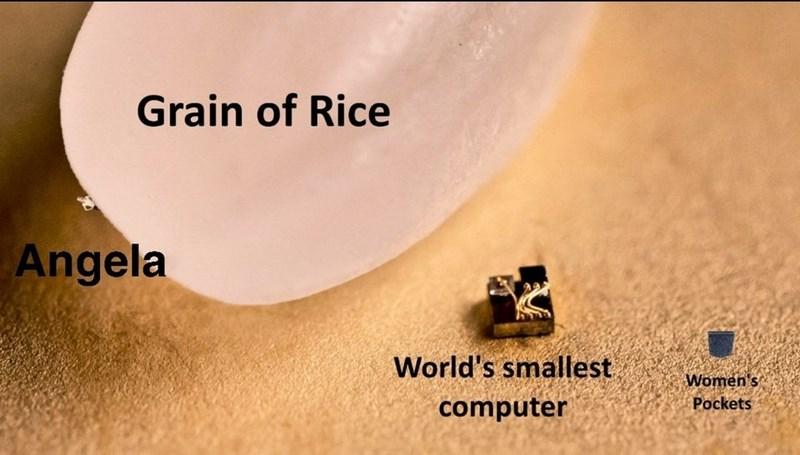 Text - Grain of Rice Angela World's smallest Women's computer Pockets