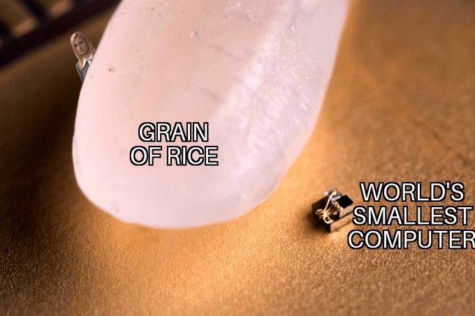 Skin - GRAIN OF RICE WORLD'S SMALLEST COMPUTER