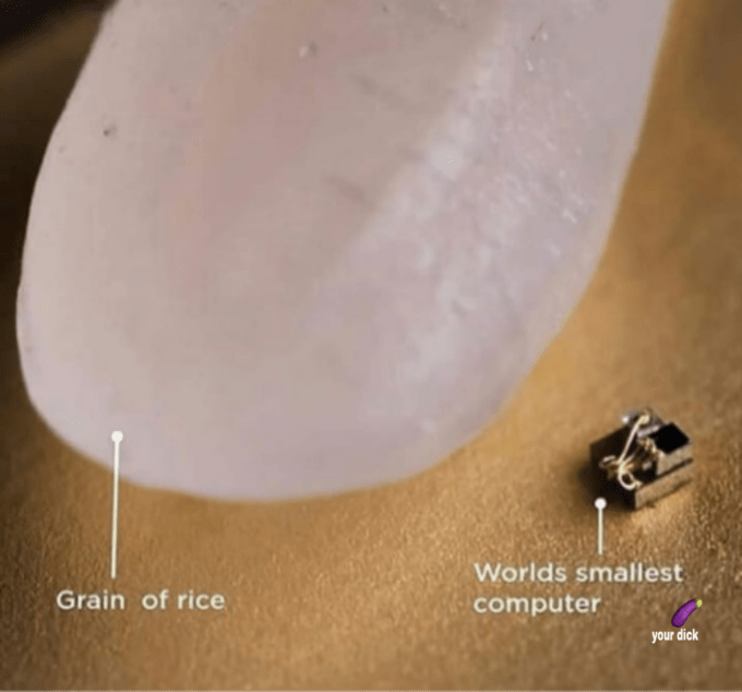 Worlds smallest Grain of rice computer your dick