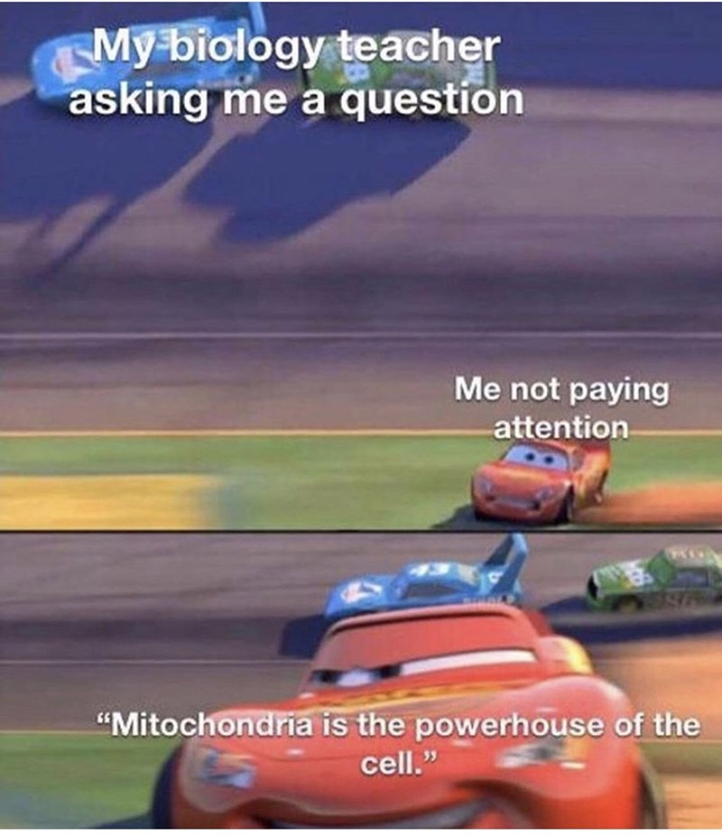 "Games - My biology teacher asking me a question Me not paying attention ""Mitochondria is the powerhouse of the cell."""