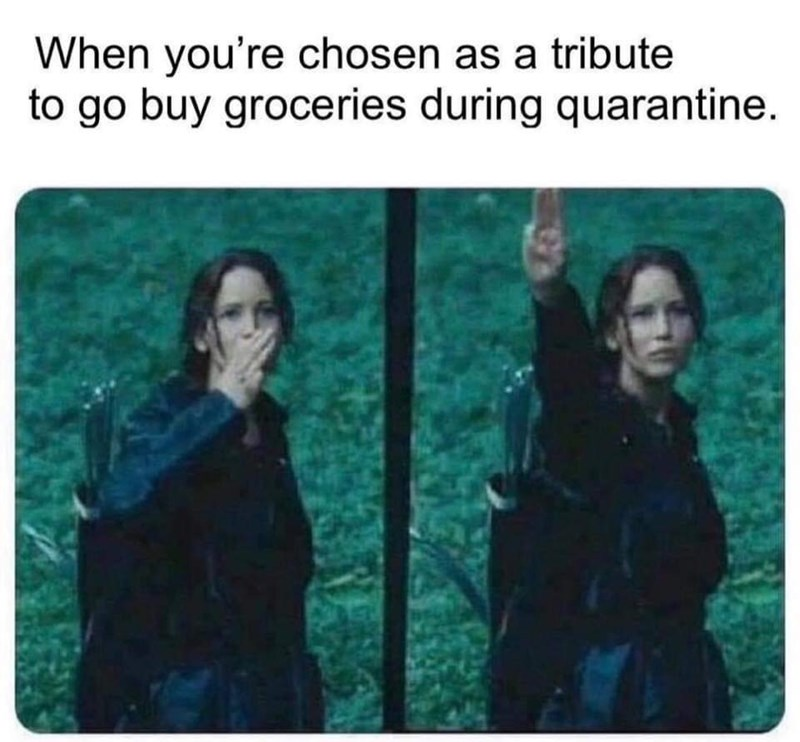 Text - When you're chosen as a tribute to go buy groceries during quarantine.