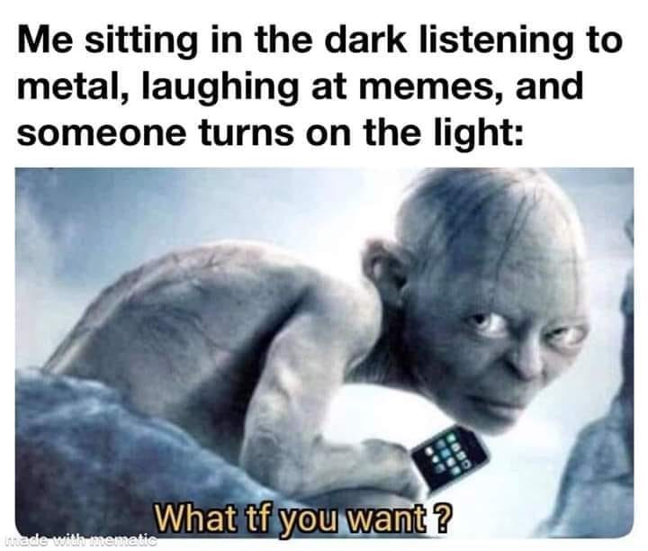 Text - Me sitting in the dark listening to metal, laughing at memes, and someone turns on the light: What tf you want ? ade with mematic