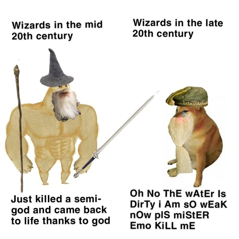 Organism - Wizards in the mid 20th century Wizards in the late 20th century Oh No ThE wAtEr Is DirTy i Am sO wEak now plS miStER Emo KILL mE Just killed a semi- god and came back to life thanks to god