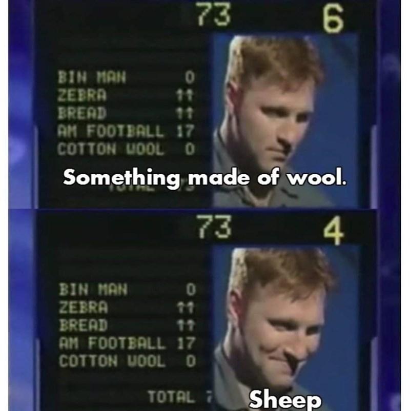 Text - 73 BIN MAN ZEBRA BREAD AM FOOTBALL 17 COTTON UOOLO 11 Something made of wool. 73 4 BIN MAN ZEBRA BREAD AM FOOTBALL 17 COTTON UOOLO 01 11 11 TOTAL 7 Sheep 41100