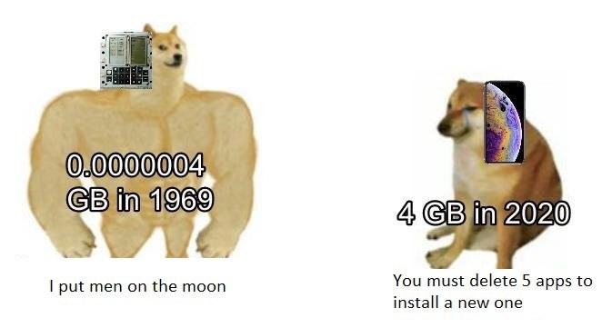 Canidae - 0.0000004 GB in 1969 4 GB in 2020 You must delete 5 apps to install a new one I put men on the moon