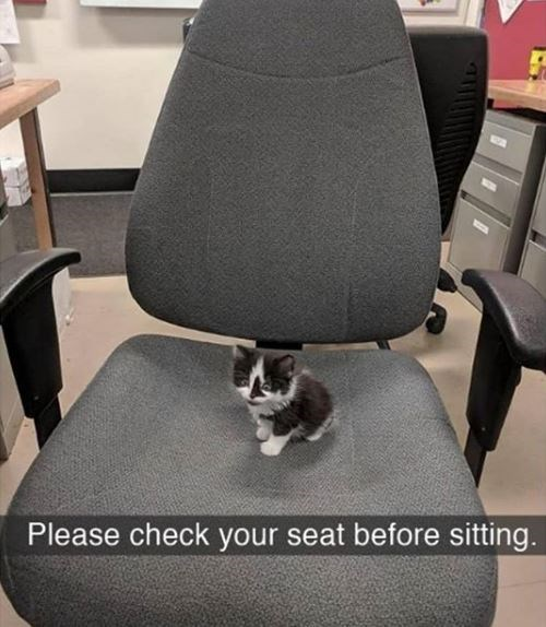 Office chair - Please check your seat before sitting.