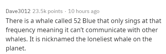 Text - Dave3012 23.5k points · 10 hours ago There is a whale called 52 Blue that only sings at that frequency meaning it can't communicate with other whales. It is nicknamed the loneliest whale on the planet.