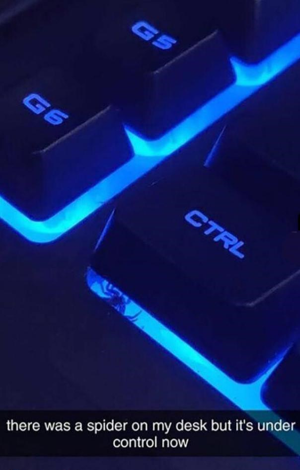 Blue - G5 G6 CTRL control now there was a spider on my desk but it's under