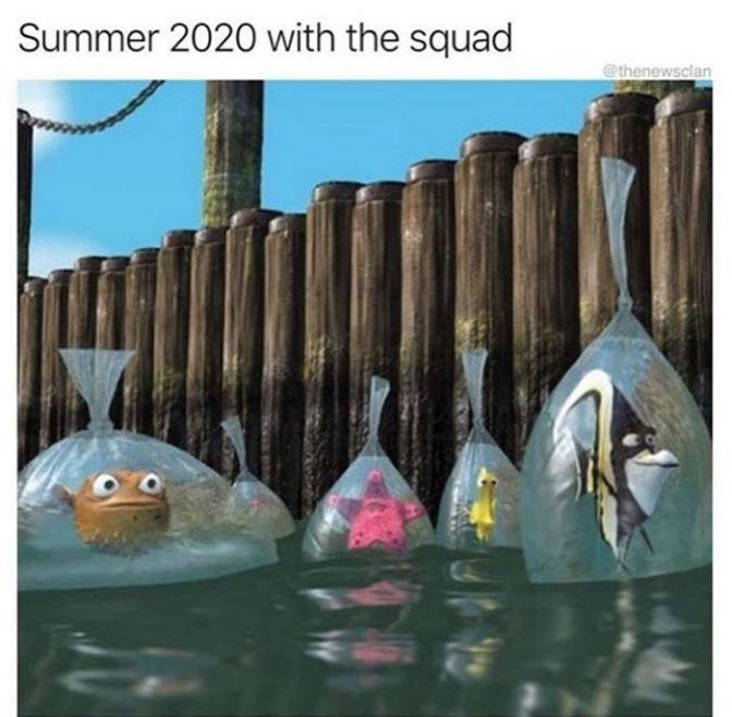 Fish - Summer 2020 with the squad @thenewsclan