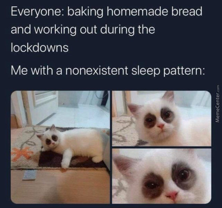 Cat - Everyone: baking homemade bread and working out during the lockdowns Me with a nonexistent sleep pattern: MemeCenter.com