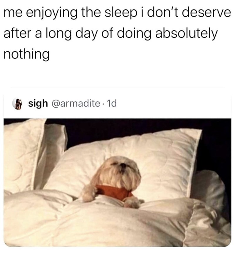 "Funny meme that reads, ""Me enjoying the sleep I don't deserve after a long day of doing absolutely nothing"" above a photo of a little dog lying in a bed"
