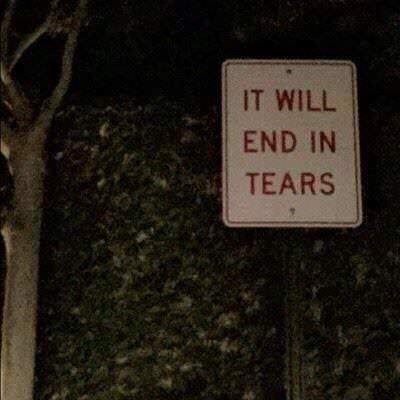 Text - IT WILL END IN TEARS