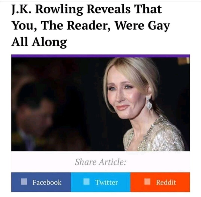 Face - J.K. Rowling Reveals That You, The Reader, Were Gay All Along Share Article: Facebook I Twitter Reddit
