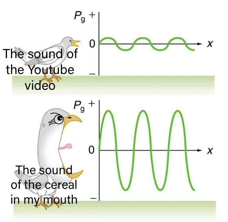 Text - Pg The sound of the Youtube video Pg The sound of the cereal in my mouth