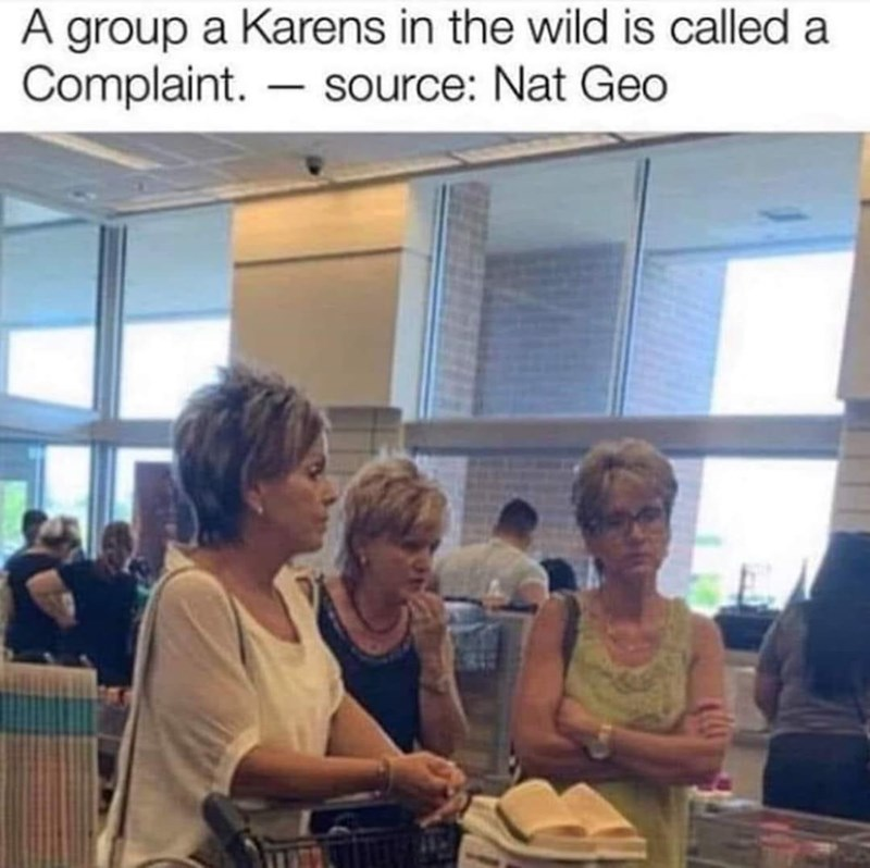 Community - A group a Karens in the wild is called a Complaint. – source: Nat Geo