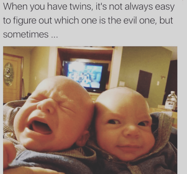 Face - When you have twins, it's not always easy to figure out which one is the evil one, but sometimes ...