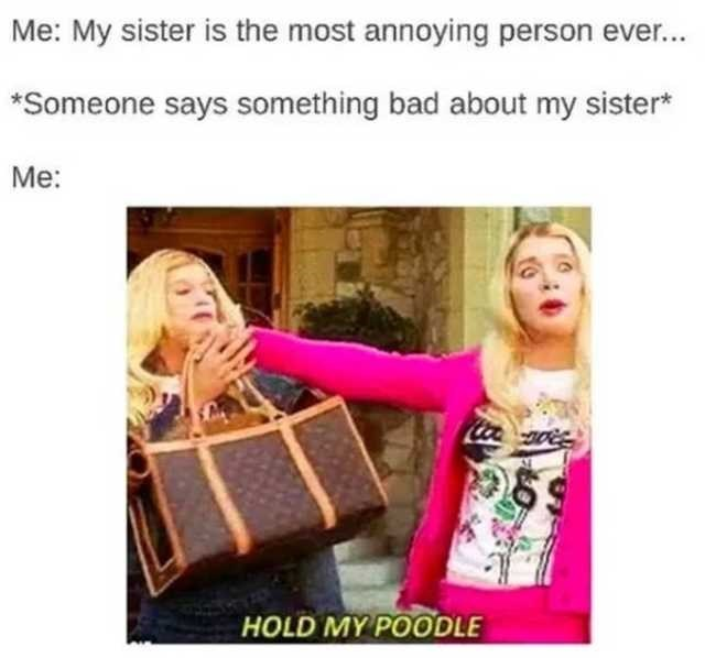 Text - Me: My sister is the most annoying person ever... *Someone says something bad about my sister* Me: HOLD MY POODLE