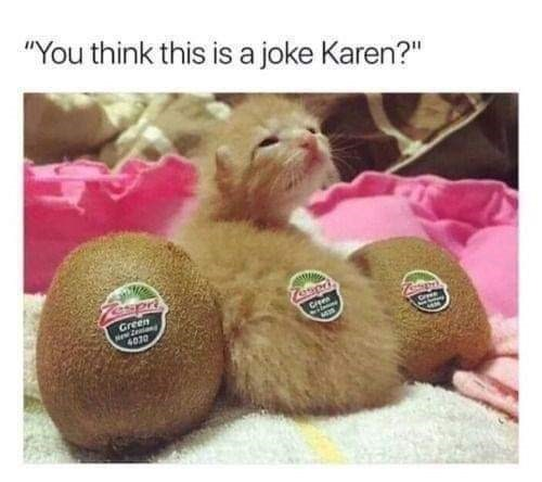 "Photo caption - ""You think this is a joke Karen?"" Green ew Z 4070"