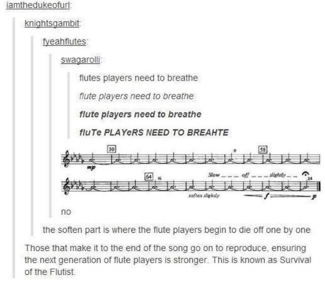 Text - iamthedukeofur: knightsgambit fyeahflutes swagaroli: fiutes players need to breathe flute players need to breathe flute players need to breathe fluTe PLAYERS NEED TO BREAHTE eff --- slightly. Slow- 表技誌 soften slightly no the soften part is where the flute players begin to die off one by one Those that make it to the end of the song go on to reproduce, ensuring the next generation of flute players is stronger. This is known as Survival of the Flutist.