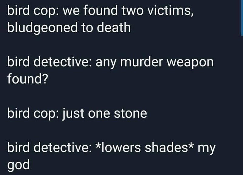 Text - bird cop: we found two victims, bludgeoned to death bird detective: any murder weapon found? bird cop: just one stone bird detective: *lowers shades* my god