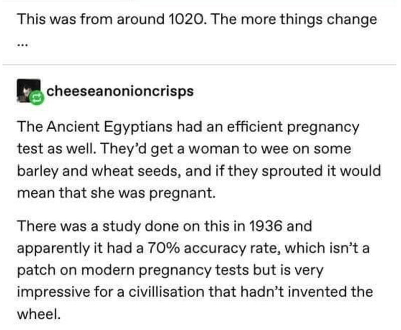 Text - This was from around 1020. The more things change cheeseanonioncrisps The Ancient Egyptians had an efficient pregnancy test as well. They'd get a woman to wee on some barley and wheat seeds, and if they sprouted it would mean that she was pregnant. There was a study done on this in 1936 and apparently it had a 70% accuracy rate, which isn't a patch on modern pregnancy tests but is very impressive for a civillisation that hadn't invented the wheel.