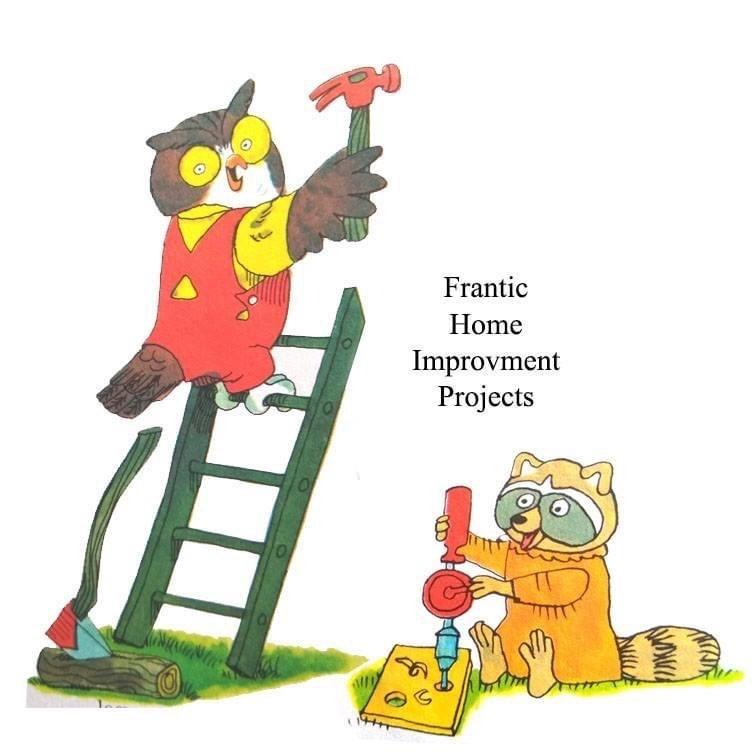 Cartoon - Frantic Home Improvment Projects