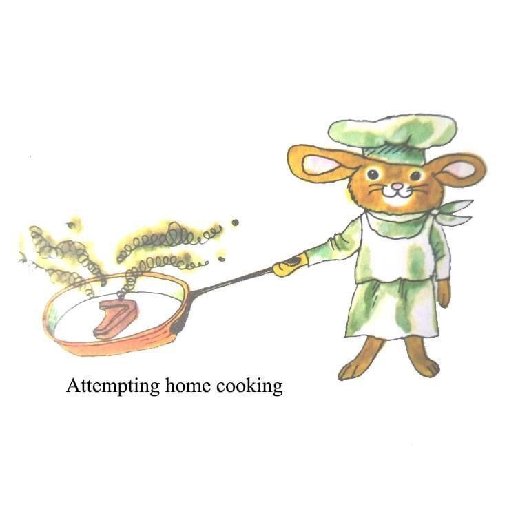 Cartoon - Attempting home cooking