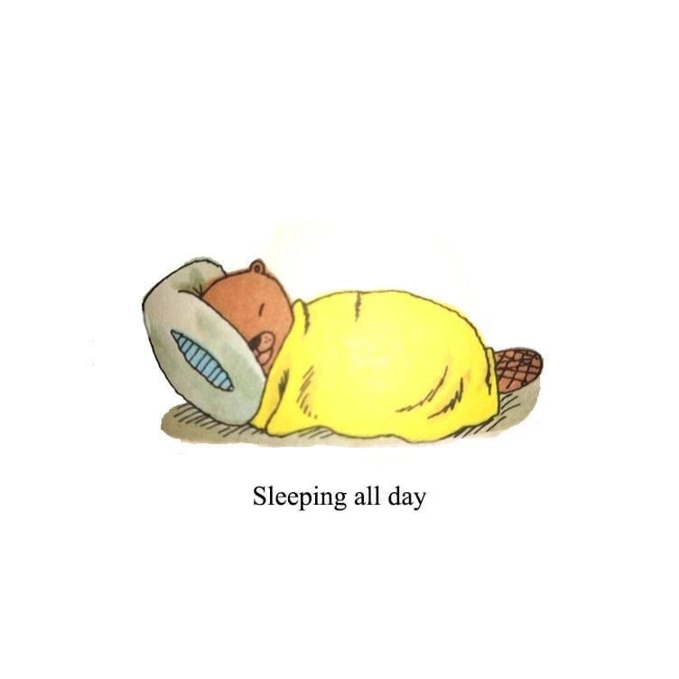 Yellow - Sleeping all day