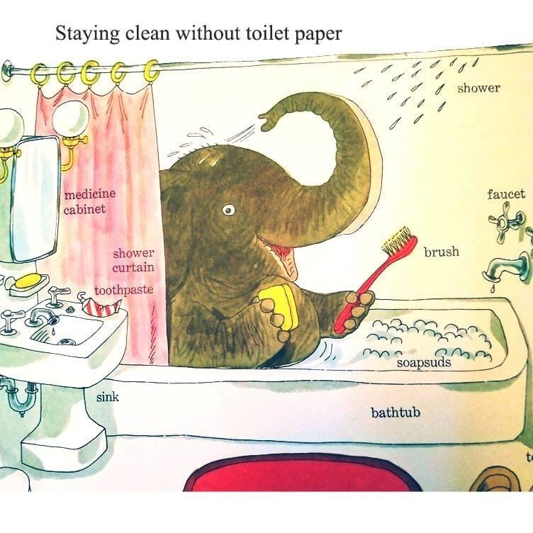Elephant - Staying clean without toilet paper shower medicine cabinet faucet shower curtain Wwww brush toothpaste soapsuds sink bathtub to