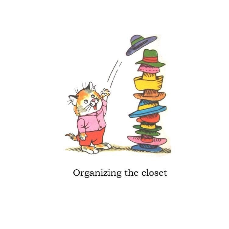 Cartoon - Organizing the closet