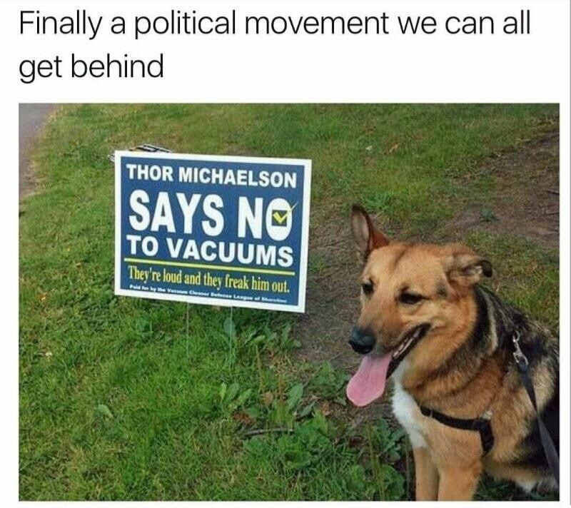 Dog - Finally a political movement we can all get behind THOR MICHAELSON SAYS NO TO VACUUMS They're loud and they freak him out. Langn af e