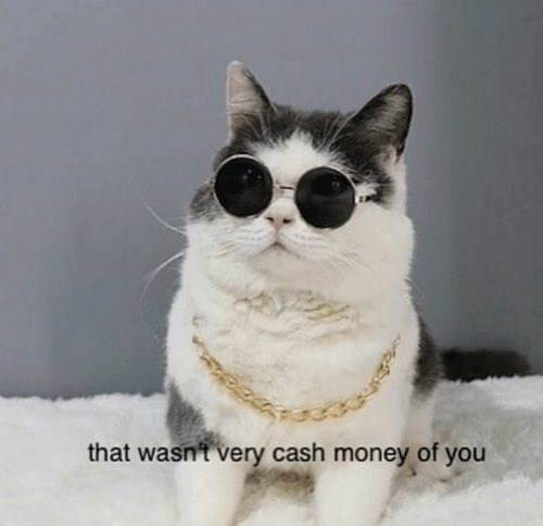 Cat - that wasnt very cash money of you