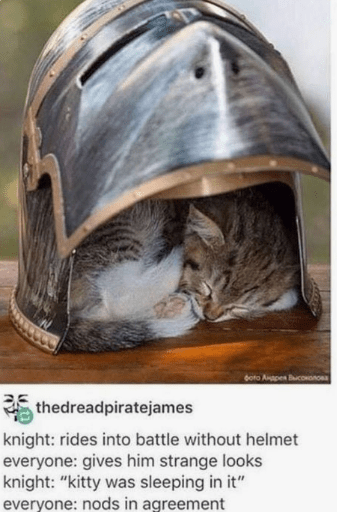 "Helmet - boto Anapen BucononOa thedreadpiratejames knight: rides into battle without helmet everyone: gives him strange looks knight: ""kitty was sleeping in it"" everyone: nods in agreement"