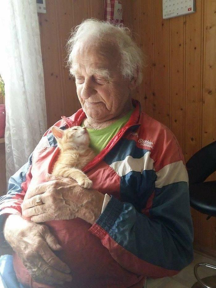Grandparent - Shoter SPORSHEAR
