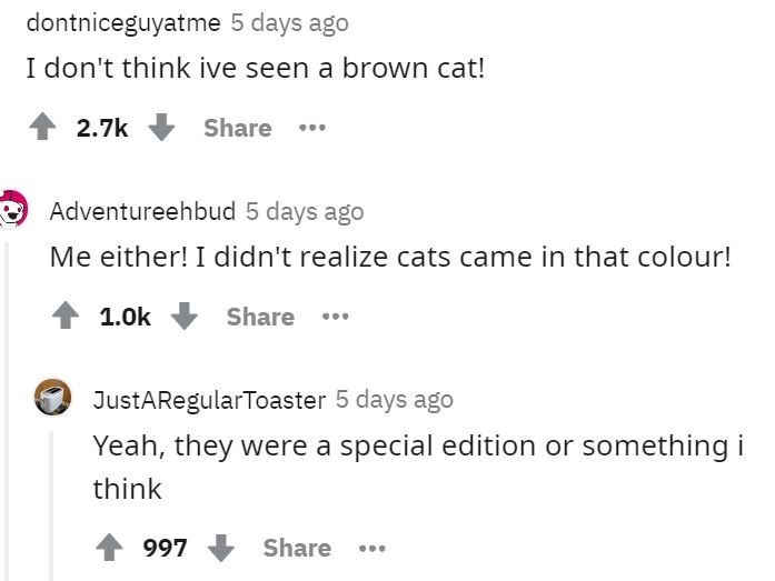 Text - dontniceguyatme 5 days ago I don't think ive seen a brown cat! 2.7k Share .. Adventureehbud 5 days ago Me either! I didn't realize cats came in that colour! 1.0k Share ... JustARegularToaster 5 days ago Yeah, they were a special edition or something i think 997 Share ...