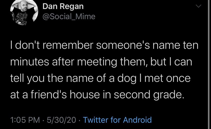Text - Dan Regan @Social_Mime I don't remember someone's name ten minutes after meeting them, but I can tell you the name of a dog I met once at a friend's house in second grade. 1:05 PM · 5/30/20 · Twitter for Android
