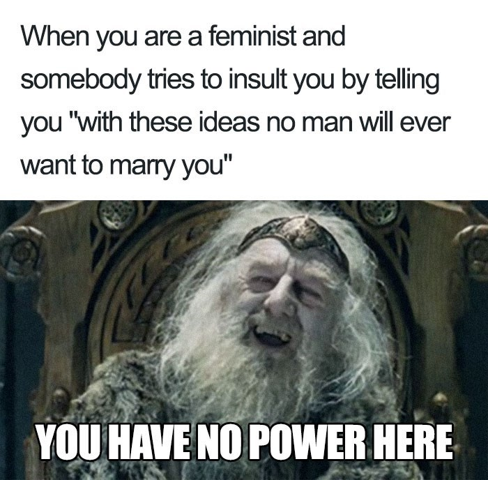 "Text - When you are a feminist and somebody tries to insult you by telling you ""with these ideas no man will ever want to marry you"" YOU HAVE NO POWER HERE"
