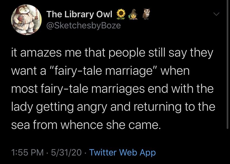 "Text - The Library Owl O @SketchesbyBoze it amazes me that people still say they want a ""fairy-tale marriage"" when most fairy-tale marriages end with the lady getting angry and returning to the sea from whence she came. 1:55 PM · 5/31/20 · Twitter Web App"