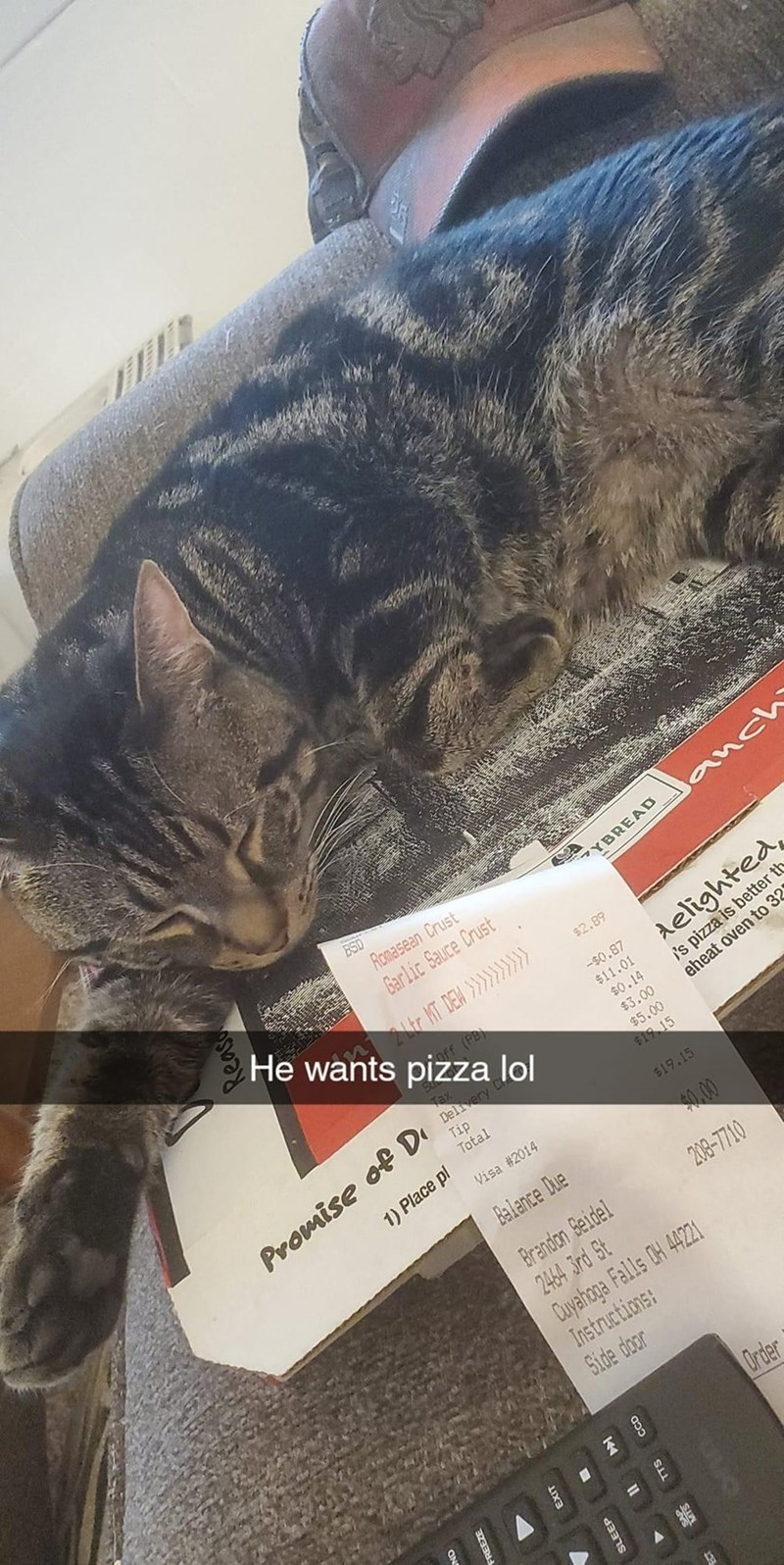 Cat - Romasean Crust anch Garlic Sauce Crust He wants pizza lol YBREAD $2.89 delighted, i's pizza is better th eheat oven to 32 Off (PB) -$0.87 $11.01 Tax Delivery C Tip Total $0.14 $3.00 $5.00 Promise of D $19 15 1) Place pl Visa #2014 $19.15 Balance Due 0.00 Brandon Seidel 2464 3rd St Duyahopa Falls OH 4421 Instructions: Side door 208-7710 Order Reas EXIT SLEEP TTS