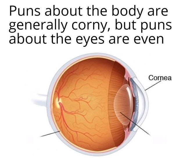Eye - Puns about the body are generally corny, but puns about the eyes are even Cornea