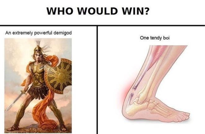 Human anatomy - WHO WOULD WIN? An extremely powerful demigod One tendy boi 6604