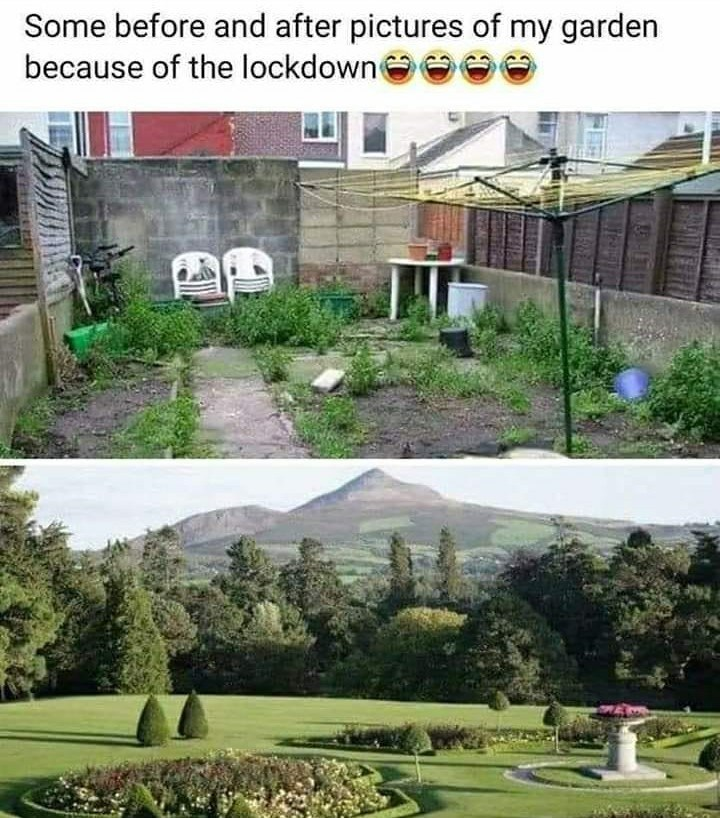 Property - Some before and after pictures of my garden because of the lockdowne