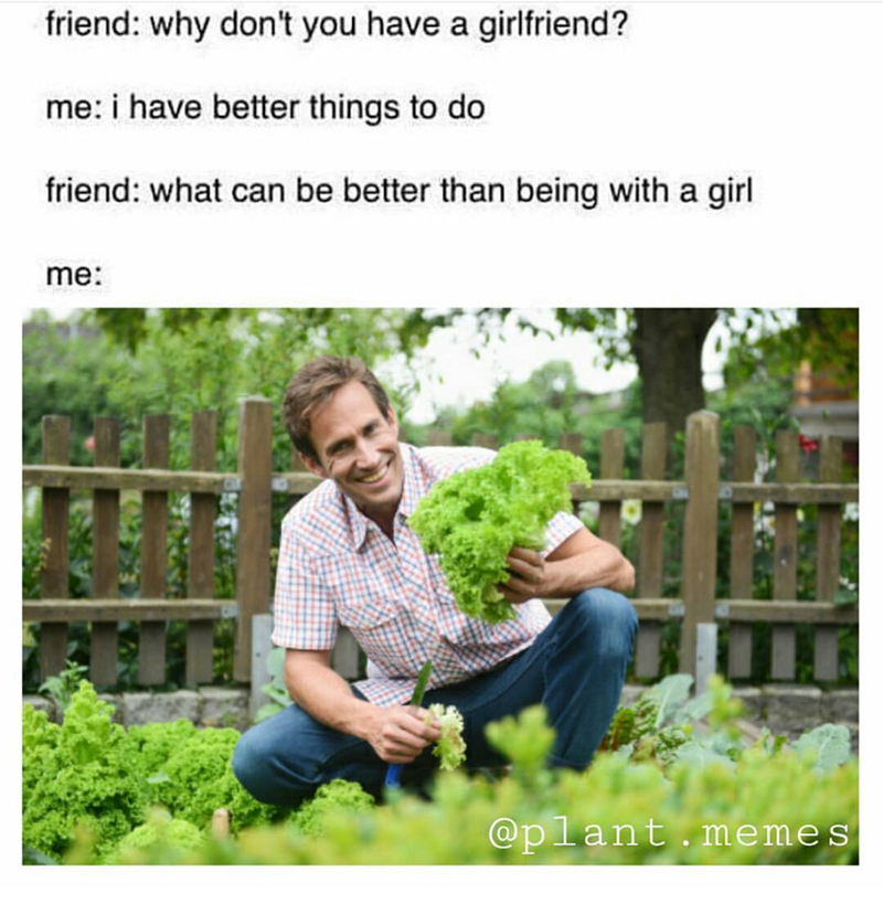 Product - friend: why don't you have a girlfriend? me: i have better things to do friend: what can be better than being with a girl me: @plant.memes