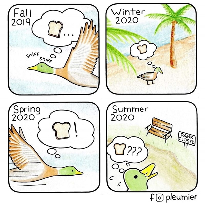 Cartoon - Fall 2019 Winter 2020 SNİFF SNİFF Spring 2020 Summer 2020 PARK CLOSED fO pleumier