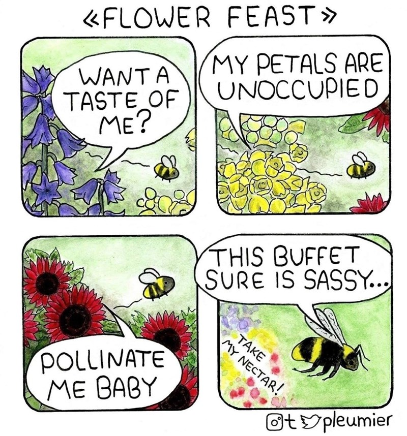 Comics - «FLOWER FEAST» MY PETALS ARE UNOCCUPIED WANTA TASTE OF ME? THIS BUFFET SURE IS SASSY... POLLINATE ME BABY TAKE MY NECTAR! Otypleumier