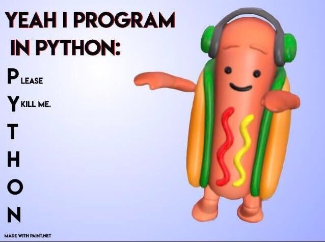 Cartoon - YEAH I PROGRAM IN PYTHON: PLEASE Y KILL ME. H N MADE WITH PAINT.NET