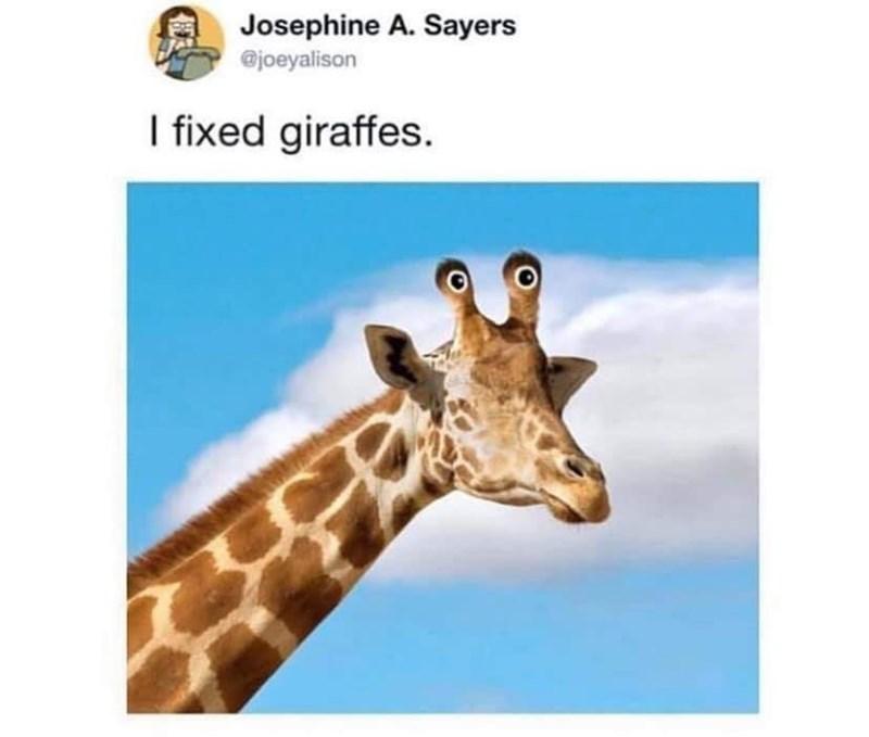 Giraffe - Josephine A. Sayers @joeyalison I fixed giraffes.