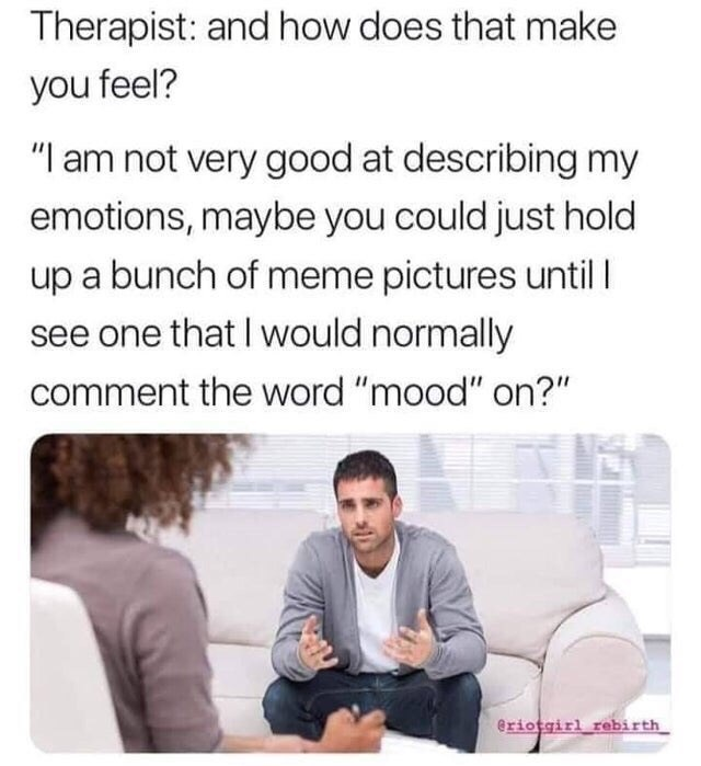 "Text - Therapist: and how does that make you feel? ""I am not very good at describing my emotions, maybe you could just hold up a bunch of meme pictures until I see one that I would normally comment the word ""mood"" on?"" eriotgirl rebirth"