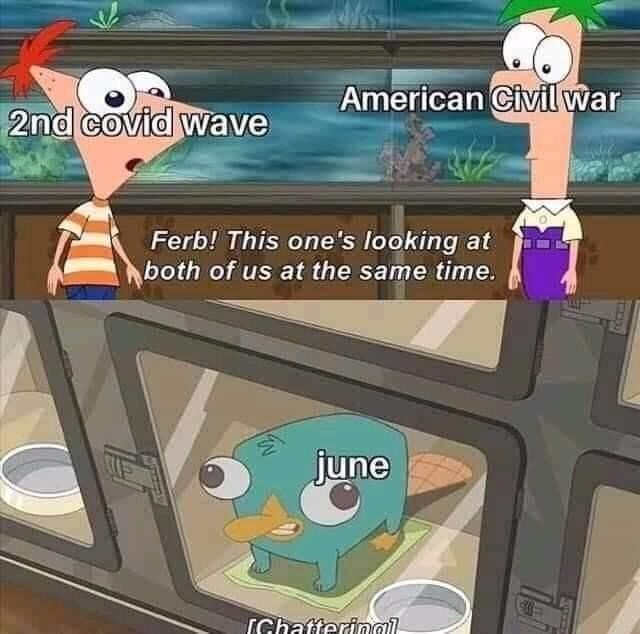 Cartoon - American Civil war 2nd covid wave Ferb! This one's looking at both of us at the same time. june (Ghatteringi