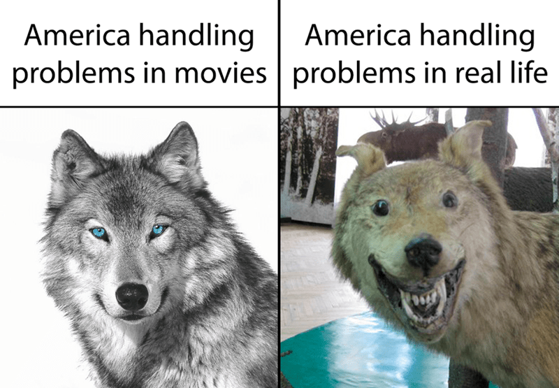 Mammal - America handling America handling problems in movies problems in real life